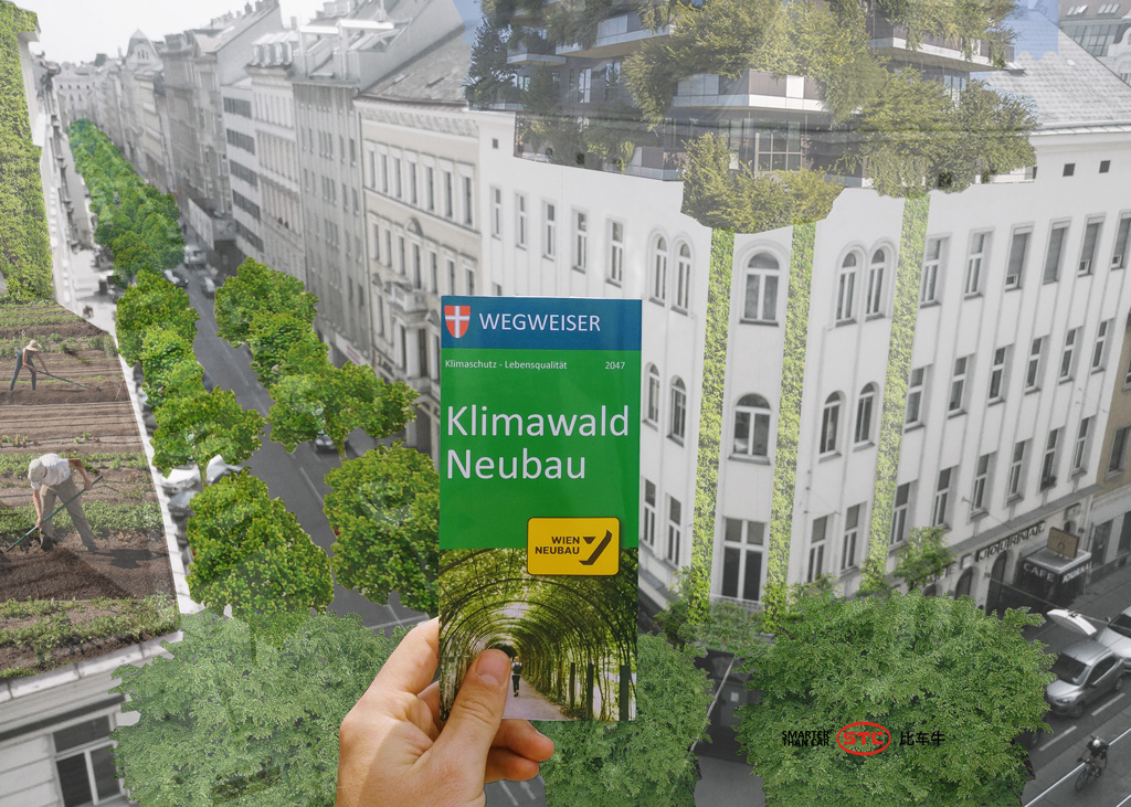 STC_Klimawald-Neubau-2047_Collage
